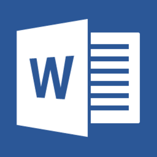 MS WORD2013